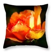 Tropicana Throw Pillow