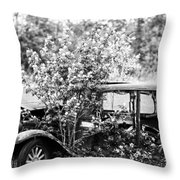 Troubled Travels  Throw Pillow