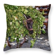 Troubles Throw Pillow