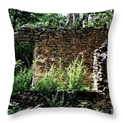 Troup Factory Throw Pillow