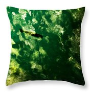 Trout In Emerald Throw Pillow