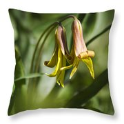 Trout Lily Flowers Throw Pillow