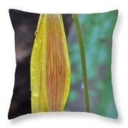 Trout Lily In The Rain Throw Pillow
