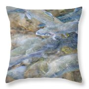 Trout Pond Abstract Throw Pillow