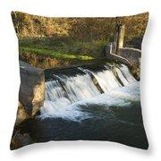 Trout Run Creek Dam 1 Throw Pillow