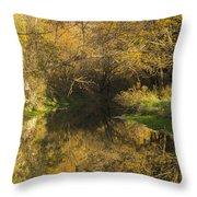 Trout Run Creek Fall 2 Throw Pillow