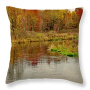 Trout Stream II- Textured Throw Pillow