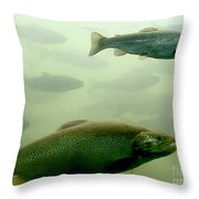 Trout Underwater Throw Pillow
