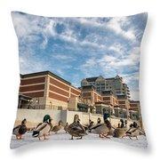 Truckee Ducks Throw Pillow