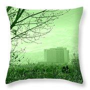 Truckee Meadows Throw Pillow