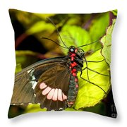 True Cattleheart Butterfly Throw Pillow