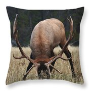Truly Horney Throw Pillow by Bob Christopher
