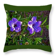 Trumpet Vine In Apache Junction-arizona   Throw Pillow