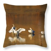 Trumpeter Ballet Throw Pillow by Mike  Dawson
