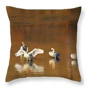 Trumpeter Ballet Throw Pillow