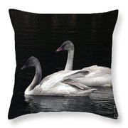 Trumpeter Swan Cygnets Throw Pillow