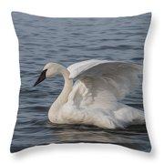 Trumpeter Swan - Profile Throw Pillow