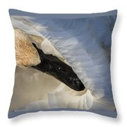 Trumpeter Swan - Safe Place Throw Pillow