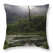 Trumpeter Swans At Sunrise Throw Pillow