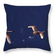 Trumpeter Swans In-flight Throw Pillow