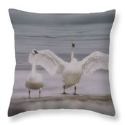 Trumpeters At The Beach Throw Pillow