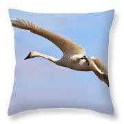 Trumpter Swan Throw Pillow