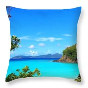 Trunk Bay St. John Throw Pillow