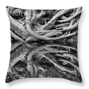Trunks On The River Bank Throw Pillow