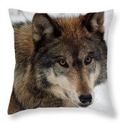 Trusting Throw Pillow