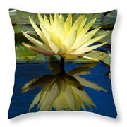 Truth Reflected Throw Pillow