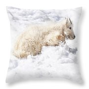 Trying To Find The Next Rock Throw Pillow