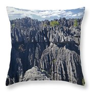 Tsingy De Bamaraha Madagascar Throw Pillow