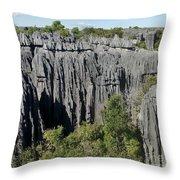 Tsingy De Bemaraha Madagascar 1 Throw Pillow