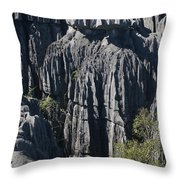 Tsingy De Bemaraha Throw Pillow
