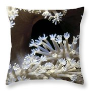Tubastrea 3 Throw Pillow