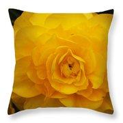 Tuberous Begonia Throw Pillow