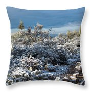 Tucson Covered In Snow Throw Pillow