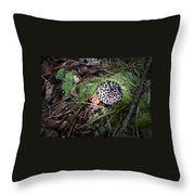 Tufted Mushroom Showing Throw Pillow