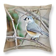 Tufted Titmouse - Baeolophus Bicolor Throw Pillow