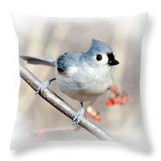 Tufted Titmouse Love  Throw Pillow