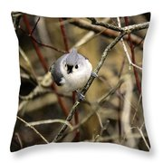 Tufted Titmouse On The Watch Throw Pillow