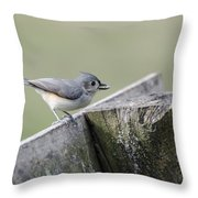 Tufted Titmouse With Seed Throw Pillow