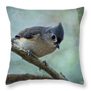 Tufted Titmouse With Snowflake Decorations Throw Pillow