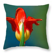 Tulip 5 Throw Pillow