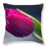 Tulip 2a Throw Pillow