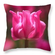Tulip At Attention Throw Pillow
