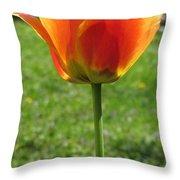 Tulip Backlit 14 Throw Pillow