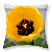 Tulip Center Throw Pillow