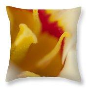 Tulip Close Up 1 Throw Pillow
