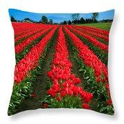 Tulip Cornucopia Throw Pillow